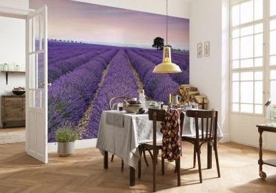 WG-XXL4-036_Provence_Interieur_i