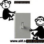 alif-vinyl art-174