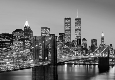 00138 Manhattan Skyline at Night